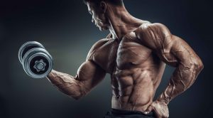 exercises to gain muscle