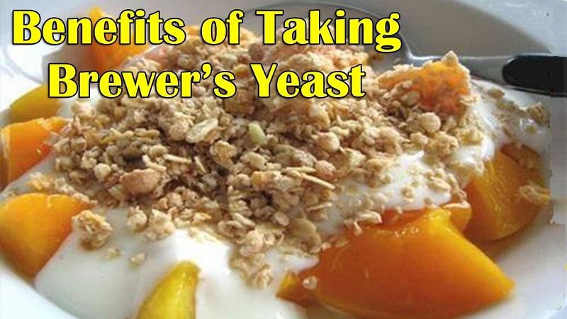 Best iron-rich foods